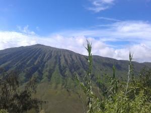 Pemandangan perjalan ke Semeru