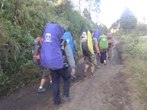 Run Hiking2